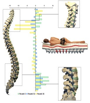 biomecanica del descanso - confort raquídeo