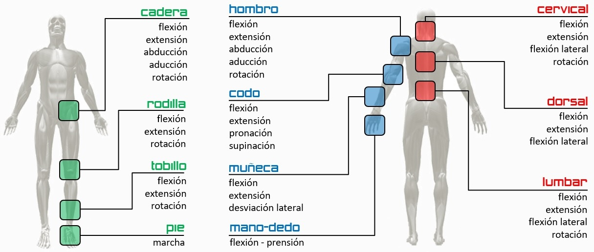 tipos de pruebas de balance articular-muscular
