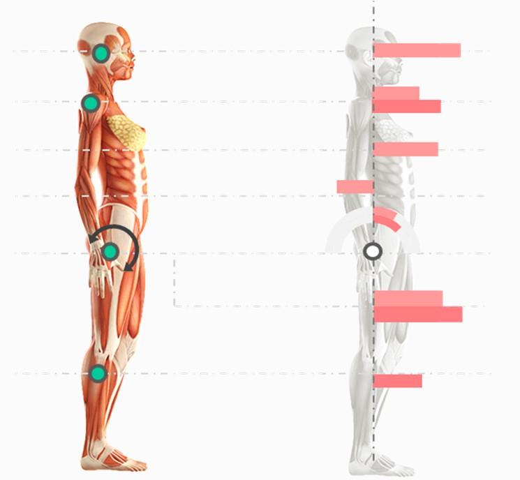 estudio de postura